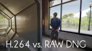 H.264-vs.-RAW-1024x576